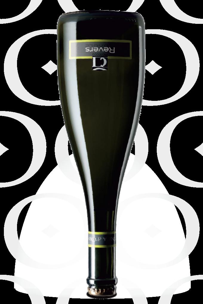 Concadoro-Reverse